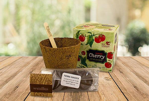 Kit Mi Primer Cultivo Ciboulette