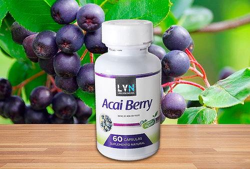60 Cápsulas Vegetales de Acai Berry