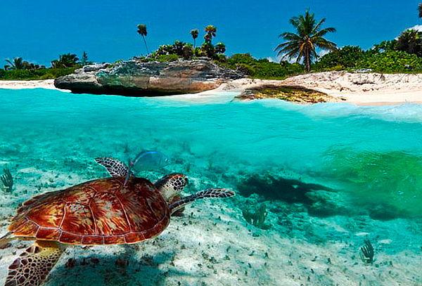 Riviera Maya, Salida 19 Febrero 2017, Todo Incluido 7 Noches