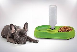Dispensador de Agua y Comida para Mascotas