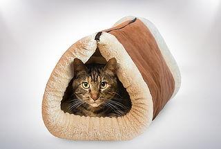 Cama para gato con cierre