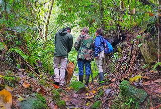 Parque Verde y Agua, Alojamiento en Camping en Fusagasuga
