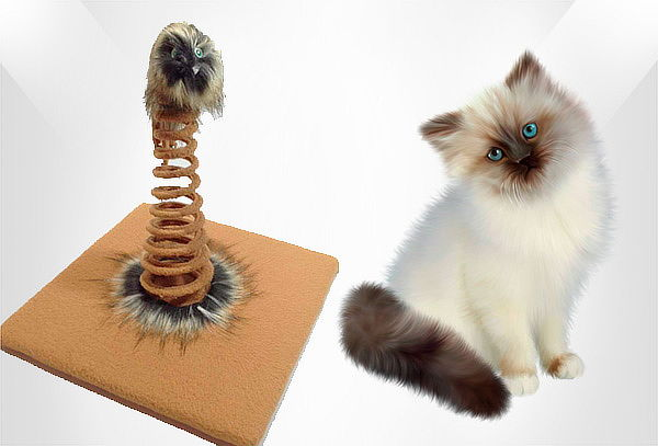 Rascador Juguete para Gato Resorte