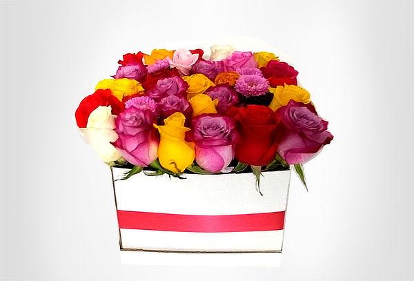 Caja de 25 Rosas en Caja a Elección + Domicilio + Tarjeta