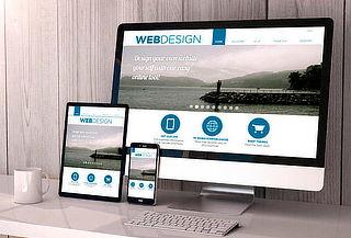 Pagina Web Profesional, Publicidad y Ventas en Internet