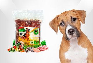 7 Porciones Alimento Natural para Perros de Pollo o de Carne