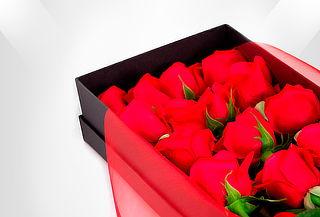 Caja de 24 Rosas Rojas de Lujo Circular o Rectangular