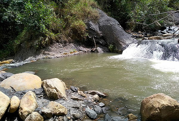 Caminata: Día de Sol y Agua en Cachipay + Transporte