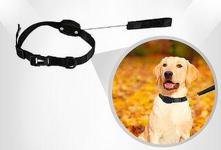 Correa y Collar Retráctil Magnético 2 en 1 para Perro