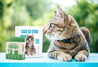 Prrrado Gatuno Kit de Siembra + WOW CAT Cocinado