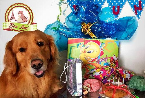 Ancheta con Torta de Cumpleaños para Perros