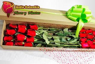 Caja x 24 Rosas Tipo Exportación a Domicilio