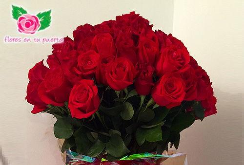 Bouquet de 50 Rosas Tipo Exportación + Domicilio