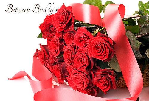 Bouquet de 24 Rosas Tipo Exportación + Envío