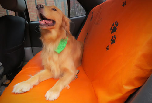 OUTLET - Forro Impermeable Mascotas