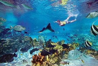 Cancún plan 4 Noches alimentación todo Incluido