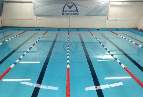 1 ó 2 meses de clases de natación para niños o adultos 3 Suc