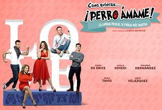 OFERTA RELÁMPAGO: Perro ÁMAME Comedia Musical Éxitos 80's