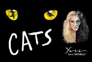 """YURI en el Musical  """"CATS"""" con Orquesta en vivo."""