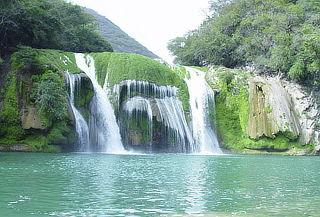 SEMANA SANTA: Huasteca Potosina 4D/3N jardín, cascadas y más