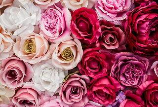 Paga 450 En Vez De 950 Por Hermosos Arreglos Florales Con Rosas De Color A Elección