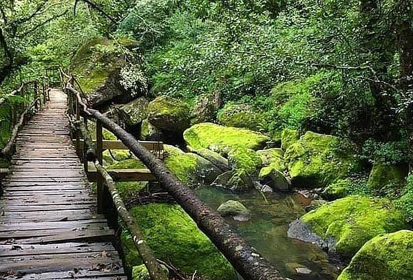 Escapada para 2: Cascadas Paraíso y Acaxochitlan,Elige fecha
