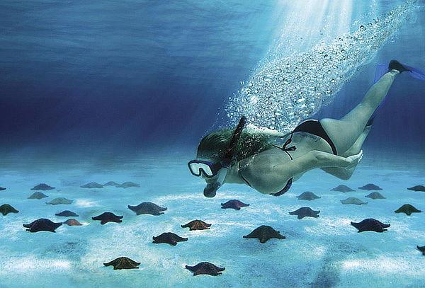 COZUMEL: Snorkel en el Cielo + Ferry + Playa del carmen