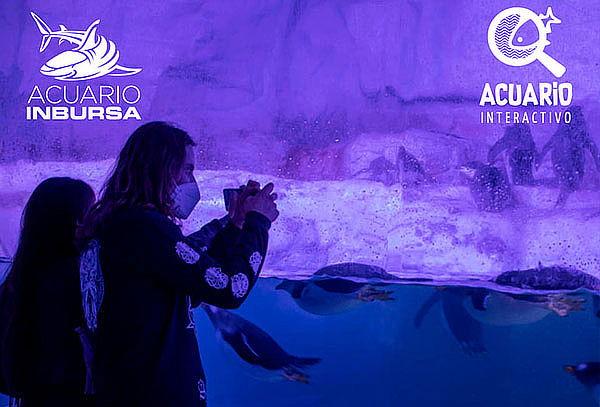 HOY: Acuario + Acuario Interactivo + Fila Preferencial