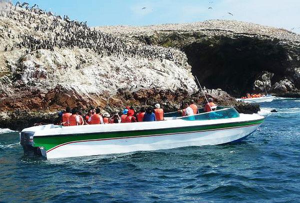 ¡Vive el Sur! 2D/1N Hotel + Tour Islas Ballestas y Más