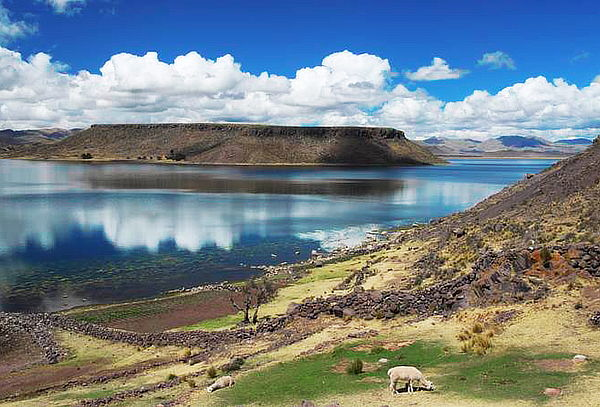 ¡Feriado APEC en Puno! Alojamiento + Excursiones y Más