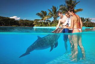 Cancún 6D/5N Vuelo + Alojamiento +Alimentación TODO INCLUIDO