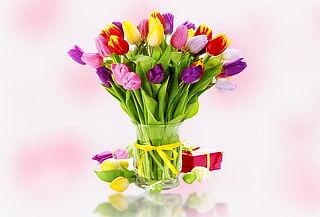 ¡Hermosos Tulipanes para Ella! Colores a Elección