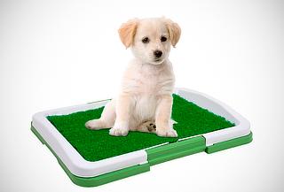 Baño Portátil Ecológico para Mascotas 3 Niveles