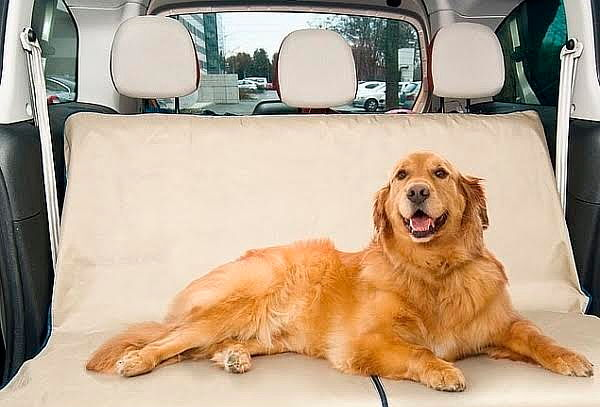 ¡Cuida tu Auto! Protector Impermeable de Carro para Mascotas