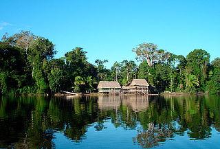 Iquitos en el Albergue Amazon Camp