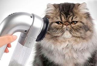 Aspirador Removedor de Pelo de Mascota para ¡Perro o Gato!