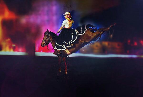 Dpaso: Cena Buffet - Show del Caballo de Paso