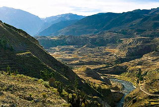 Tour Valle de Colca - Full Day + Almuerzo Buffet y Más