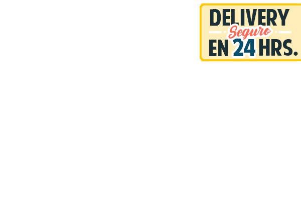 Delivery Seguro